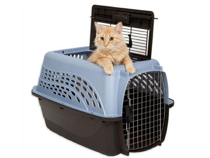 Trasportino per gatti