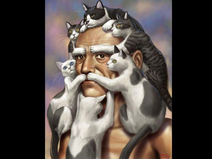Come il gatto vede il padrone