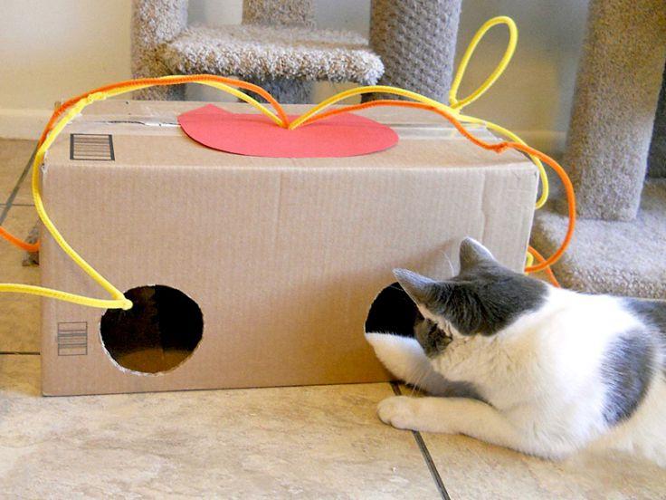 Mobili Per Gatti Fai Da Te : Giochini faidate per gatti idee