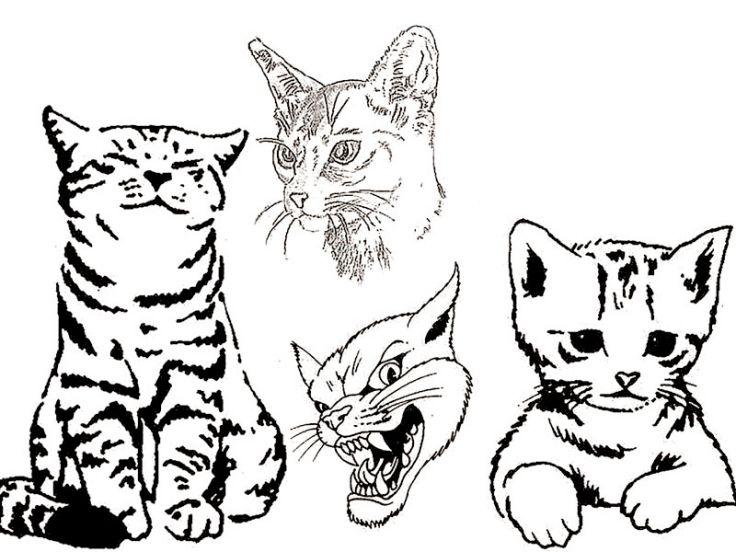 Tatuarsi un gatto, consigli, esempi e significato