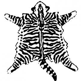 Disegno mantello Mackerel Tabby o Tigrè