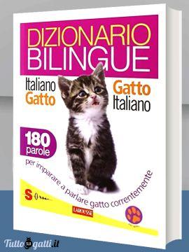 Libro: Dizionario bilingue italiano-gatto, gatto-italiano