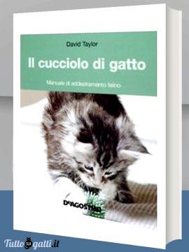 Libro: Il cucciolo di gatto