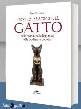 Libro: I poteri magici del gatto
