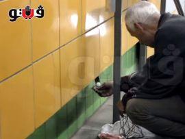 Gatto imprigionato dietro a un muro per 5 anni