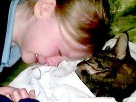 Soppressione del gatto