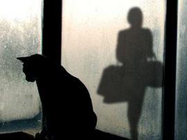 I gatti soffrono la solitudine?