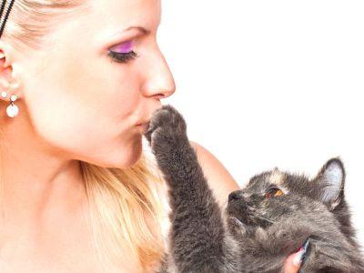Il gatto preferisce le donne