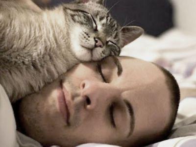 Dormire col proprio gatto aiuta a dormire meglio