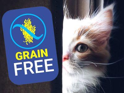 Cibo per gatti grain free