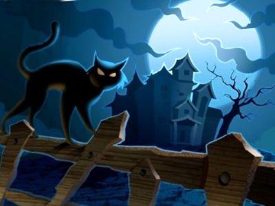 Superstizioni sui gatti
